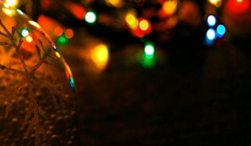 Christmas Festival News